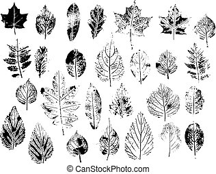 Set with stamp leaves. Objects isolated on white. Black and white.