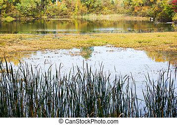 Beautiful lake in autumn