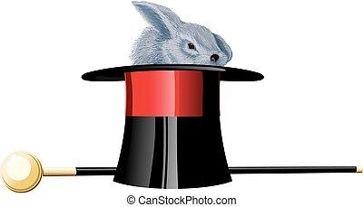 Magick hat rabbit