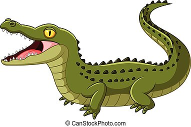 Crocodile open mouth - Vector illustration of Crocodile open...