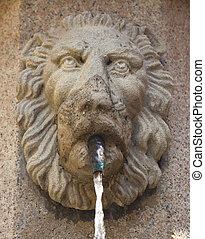 detail of a Fountain  with water
