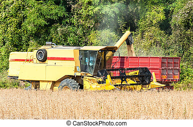Combine harvester and tractor trailer - Overloading grain...