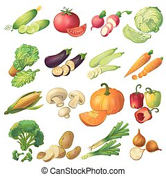 Fresh Vegetables Icon Set - Sixteen isolated realistic...