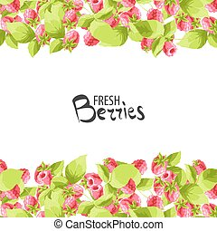 Raspberry fruit background - Bright raspberry with leaves on...