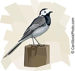 Vector simple illustration of wagtail bird. - Vector simple...