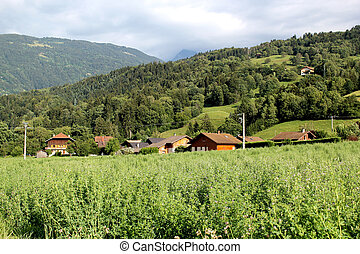 Landscape of vegetation and houses, France - Landscape with...