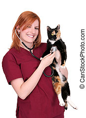 woman vet with cat - one twenties young pretty woman...