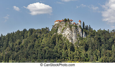 Old castle in Bled, Slovenia - Old medieval castle in Bled,...