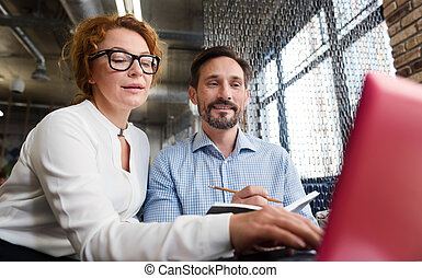 Middle-aged couple working on laptop and taking notes -...