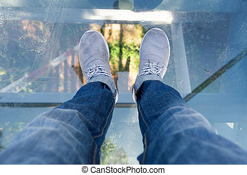 The Canopy Walkway a floor can look through elevated from...