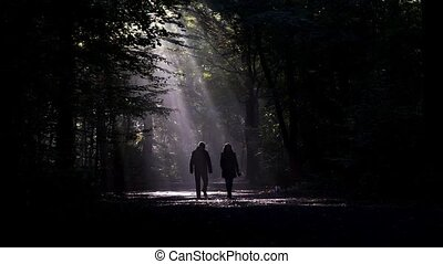 couple walking the dog in dark forest - couple walking the...