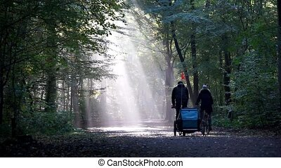 couple cycling with child transporter through forest -...
