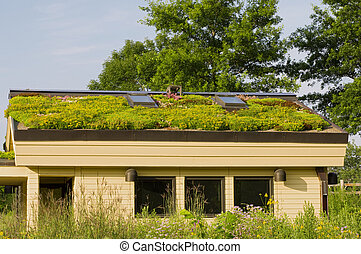 Lebanon Hills Green Roof and Gardens - Photo of Lebanon...