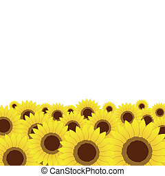 Summer meadow, sunflowers background for your design