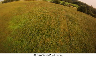 Field landscape aerial view. - Vast field with some bushes...