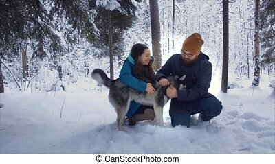 Couple walking with a dog Husky in s winter forest. They are...