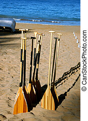 End of Day in Hana - Group of oars stick out of the sand at...