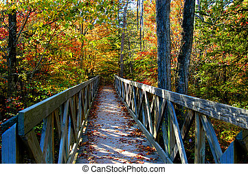 Autumn Arkansas and Amazing - Rustic, wooden bridge beckons...