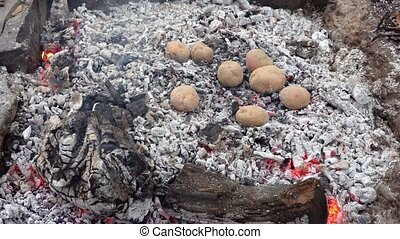 Baked potato in a fire
