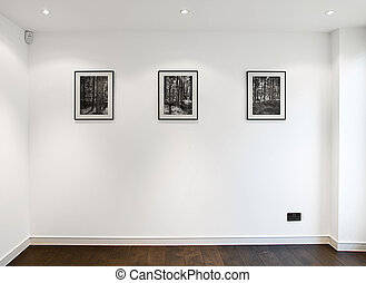 Three Picture Frames on Wall above American Oak Floor - Shot...