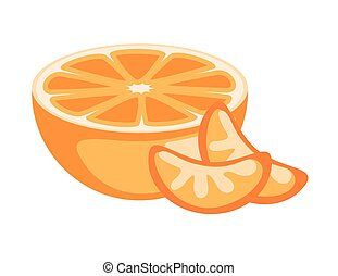 Half Orange and Slices Vector Illustration