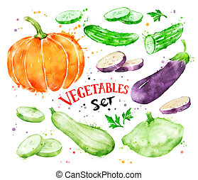Watercolor set of vegetables. - Hand painted watercolor...