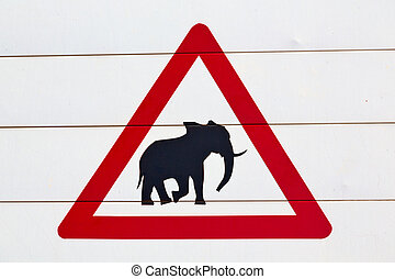 in south africa close up of the elephant sign - blur in...