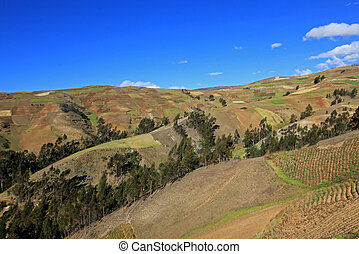 Andes mountains displaying agriculture fields, South America