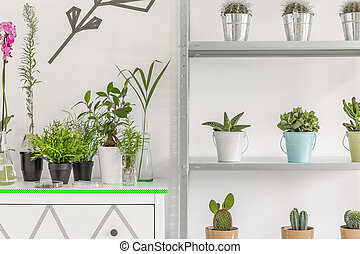 Flower pots on commode and rack shelves - Closer shot of...