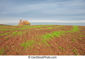 tillage. the preparation of land for growing crops. Green...