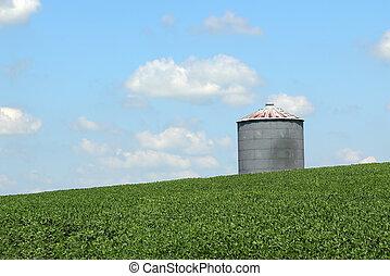 Silo in a Soybean Field - Grain bin on top of a soybean...
