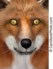3D Rendering Red Fox - 3D rendering of a head of a red fox,...