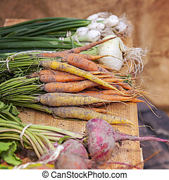 Fresh root vegetables - Image of fresh root vegetables at...