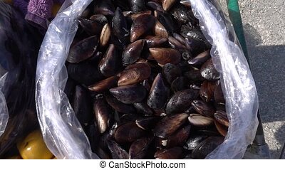 Mussel In a Bag