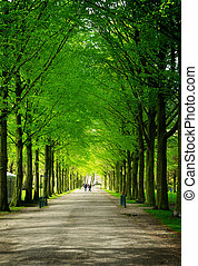 Clingendael park, Den Haag, Netherlands - Alley in...