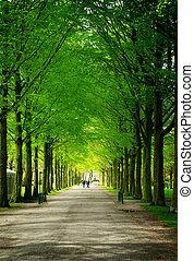 Clingendael park, Den Haag, Netherlands - Alley in...