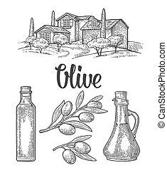 Set olive. Bottle glass, branch with leaves, rural landscape villa