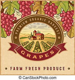 Vintage colorful grapes harvest label