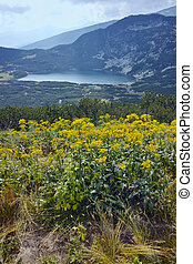 The Seven Rila Lakes, Bulgaria - Panoramic view of The Lower...