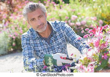 maintenance in the garden