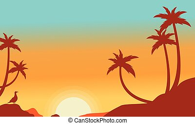 Silhouette of palm on the hill