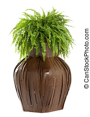 Interesting bulbous wooden flower box with a lush green fern...