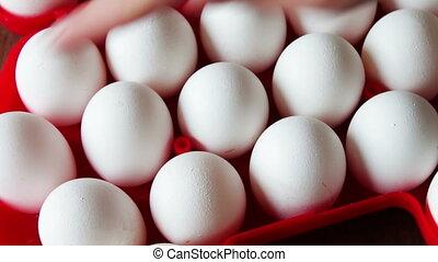 fresh raw eggs in a red tray - Big white fresh raw eggs in a...
