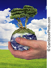 Future in your hands - Hand holding a globe with a tree...