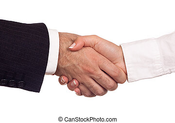 Shaking hands - Man and woman shaking their hands in a...
