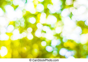 Abstract blur green bokeh light