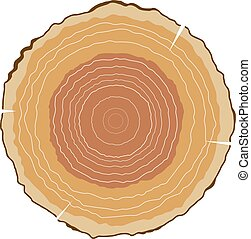 Vector illustration of round cut wood with growth rings. The...