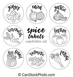 Spices herbs labels and stickers. Contour vector vegetables...