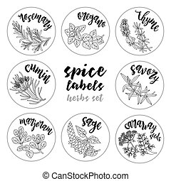 Spices and herbs labels and stickers. Contour vector herbal...