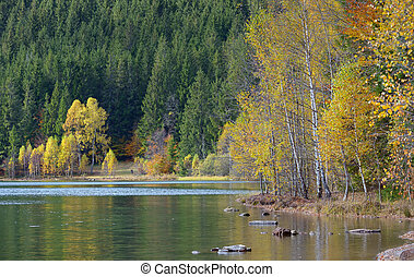 Autumn  with the yellow foliage, reflected in Lake